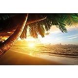 GREAT ART Mural de Pared ? Puesta De Sol En La Playa ? Verano Caribe Paisaje Mar Naturaleza Playa Puesta De Sol Sueño Vacaciones Foto Papel Pintado Y Tapiz Y Decoración (336 x 238 cm)