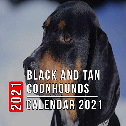 Black and Tan Coonhounds Calendar 2021: 12-month mini Calendar from Jan 2021 to Dec 2021, Cute Gift Idea For Black and Tan Coonhounds Lovers Or Owners Men And Women | Pictures in Every Month