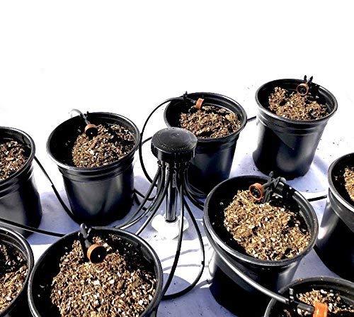 12-Plant Home Grow Kit - Great Starter Hydroponics Drip Irrigation Kit! -...