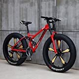 Mountain Bikes, 26 Inch Fat Tire Hardtail Mountain Bike, Dual Suspension Frame and Suspension Fork All Terrain Mountain Bike (Color : 27 Speed, Size : Red 5 Spoke)