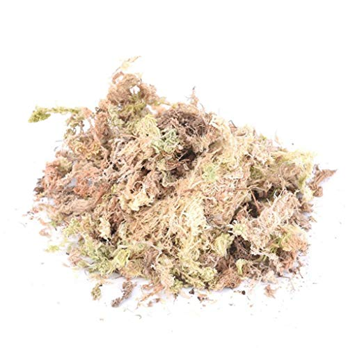 lulongyansf 1pack 12l Sphagnum Dry Moss Garden Moisturizing Ernährung Organische Dünger Für Orchideephalaenopsis Musgo Sphagnum Wohnaccessoires
