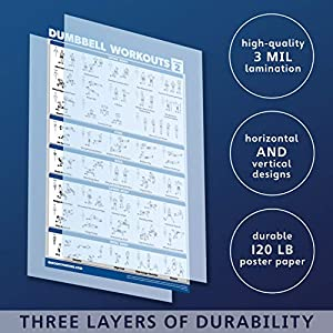 """Palace Learning 3 Pack: Dumbbell Workouts Posters Volume 1 & 2 + Barbell Exercises - Set of 3 Workout Charts (Laminated, 18"""" x 27"""")"""