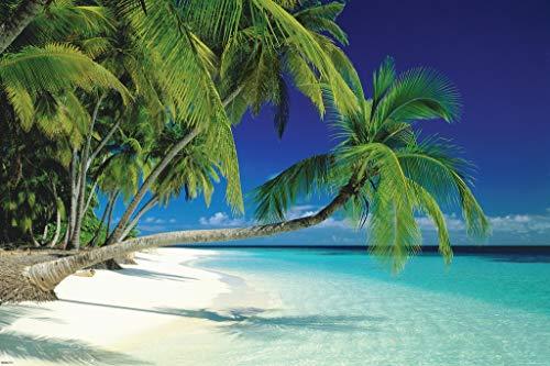 Pyramid America Maldives Polynesian Tropical Beach Photography Cool Wall Decor Art Print Poster 36x24