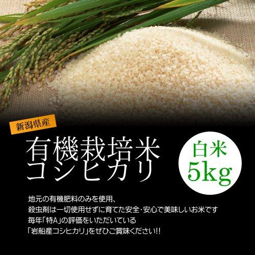 【バレンタイン プレゼント・チョコレート付】有機栽培米コシヒカリ 白米(精米) 5kg/化学肥料ゼロで育てた新潟産有機米