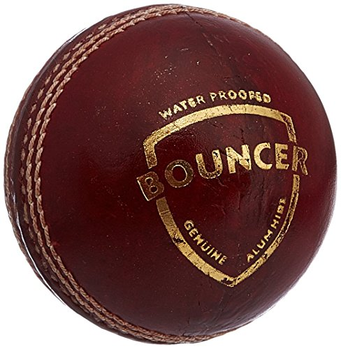 USV Bouncer Leather Ball