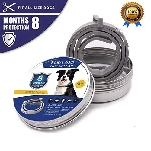 Fallcon Collar Antiparasitos Perros Natural contra Pulgas,
