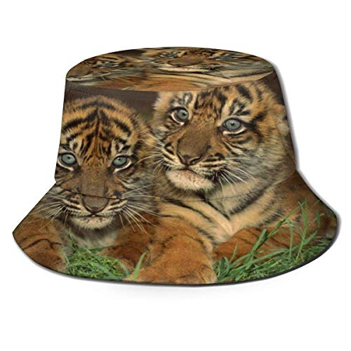 Beyond Loser Bucket Hat,Fishing Hat Tigers Cubs Big Cat Soft Cotton & Polyester Fabric Unisex Wide Sun Cap Windproof for Hiking Camping Traveling Fishing