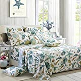 FADFAY Sheet Set Queen Beach Themed Bedding Sets 100% Cotton Super Soft Coastal Bedding White Teal Seashells and Starfish Nautical Bedding with Deep Pocket Fitted Sheet 4-Pieces Queen Size
