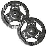 WILD FIT ワイルドフィット アイアン レギュラー (Φ28mm) プレート 10kg (2枚) 《返品 交換不可》 N005-1