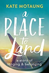 airplane in sky a place to land book cover