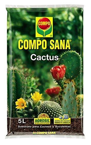 Compo Sana 8 semanas de abono para Todas Las Especies de Cactus y suculentas, Substrato de Cultivo, 5 L, 37x23x5.5 cm
