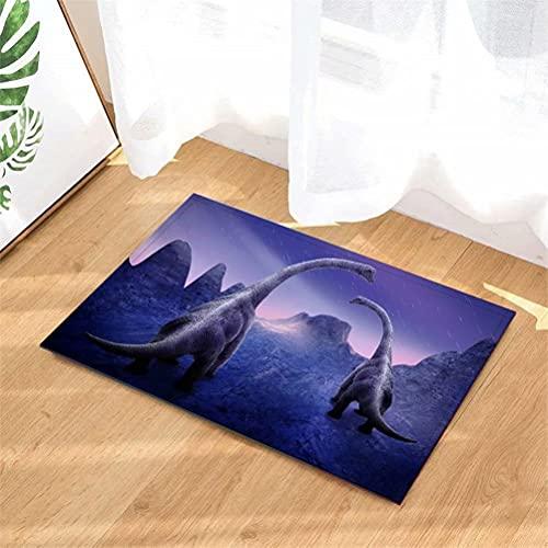 ZYH Alfombra De Puerta Alfombra Alfombra Estampada Interior/Ducha Alfombras De Entrada De Baño Alfombras Felpudo, Felpudos Antideslizantes,40Cmx60Cm. Decoración De Dinosaurios.