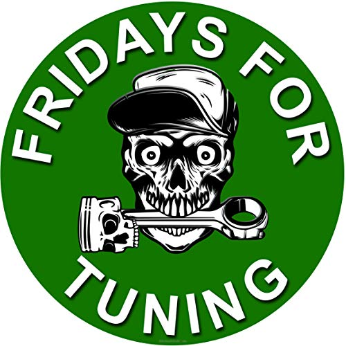 Fridays for Tuning Auto Aufkleber mit Kolben Skull Schädel - Petrolhead - Fuck You Greta Aufkleber - es reicht Autoaufkleber Tuining Sticker Autotuning CO 2 Skandal