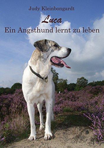 Luca: Ein Angsthund lernt zu leben