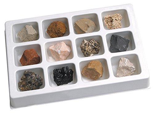 Learning Resources- Colección de Rocas sedimentarias (EI-5208)