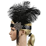 Feather Headband Flapper 1920s Headpiece Headband Gothic Headdress Crystal Sequins Beaded Burlesque Feather Flapper Native American Chief Feather Hat Headpiece Halloween Costume Accessory Fanny Dress