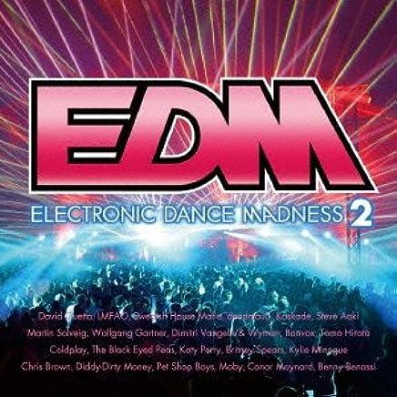 EDM~エレクトロニック・ダンス・マッドネス2