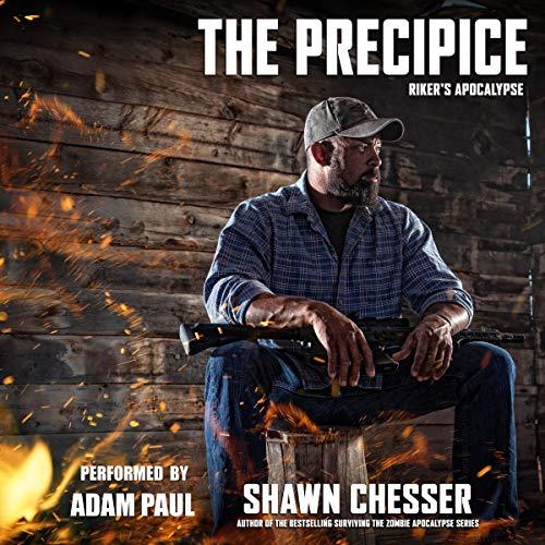 The Precipice Titelbild