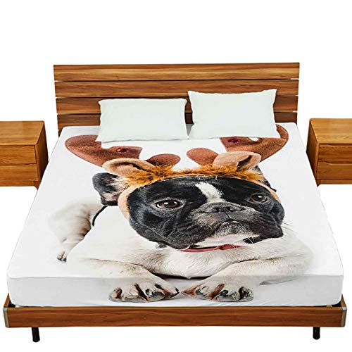 Fitted Bed Sheets Queen Size, French Bulldog with Reindeer Antlers Isolated on White in Studio Color and Vertical Composition, Deep Pocket Fitted Sheet