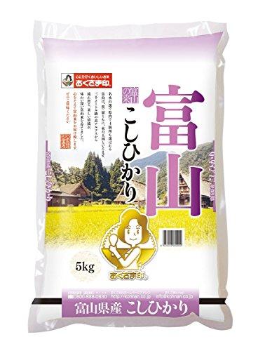 【精米】 富山県産 白米 コシヒカリ 5kg 平成29年産
