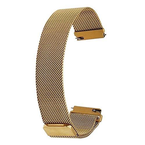 RHBLHQ Bucle de Correa 16 mm 18 mm 20 mm 22 mm 23 mm 24 mm Hebilla de cinturón Universal imán de Acero Inoxidable Reloj Pulsera Banda rápida liberación (Band Color : Gold, Band Width : 16mm)