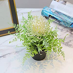 XISENOCI Simulation Artificial Protea Flower Bonsai, Plastic Flower Potted Plants, Suitable for Decorating Weddings, Homes and Gardens, Offices, Cafes
