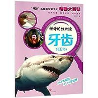 """神奇的放大镜:牙齿(""""微距""""式呈现全彩少儿动物大百科,全面、精准展现奇妙的动物世界,激发孩子的求知欲与探索精神!)"""