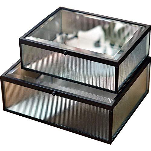 ZGYZ Schmuck Spiegel Box, Klarglas Pflanze Terrarium, Home Decor Abgeschrägte Display Box Andenken Schmuckstück für Ring, Halskette Vitrine