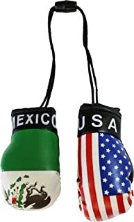 USA and Mexico Mini Boxing Gloves