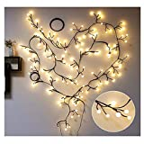 Aluvee Globe String Lights, 72 Bulbs 8 Modes Plug-in Globe Decorative Bedroom Christmas Window Garden Wedding Birthday Party Warm White Starry Fairy Plug String Lighting