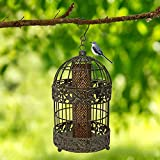 13 in.Caged Bird Feeders for Swallow Outside Outdoor Garden Patio Yard Balcony Tall Rustic Metal