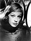 The Poster Corp Hildegard Knef Photo Print (40,64 x 50,80