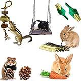 Juguetes para Masticar Conejos, Juego de 8 Piezas de Juguete para Conejillos de...