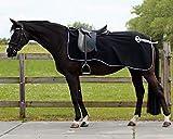 QHP Nierendecke Fleece-Ausreitdecke Ornament Fleecedecke Sattelausschnitt hinten mit Ornament in Silber (schwarz, S)