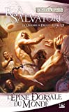 La Légende de Drizzt, Tome 12 - L'Épine dorsale du monde