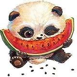 JRGGPO Panda DIY 5d Diamante Pintura Niños Adulto Regalo Mosaico de Diamantes Punto de Cruz, decoración de Pared(40x50 Diamante Cuadrado)
