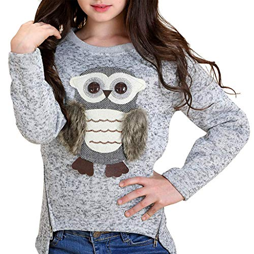 QinMM Sudadera con Estampado de búhos de Dibujos Animados para niñas niños 6-14 años, Manga Larga Jersey Pullover Blusa Camiseta Invierno otoño