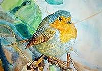 数字でDIYの絵画_色-オウム-鳥_写真によって番号、_写真によって番号、_40x50cm_DIYフレーム