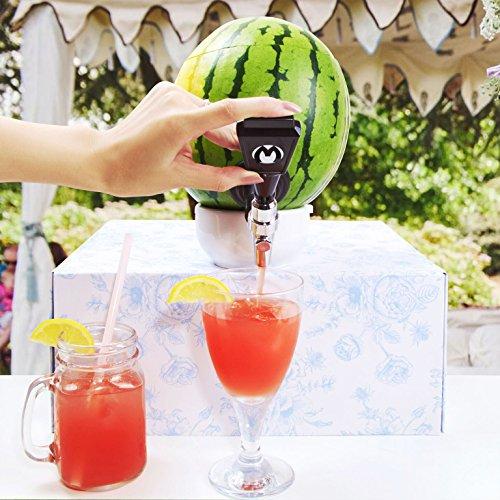 Melonen Zapfhahn Das Partyhighlight zapfen Sie Ihr Getränk direkt aus der Frucht als Getränkespender Perfekt zum Stilvollen Servieren von Bowle Cocktails und andere fruchtigen Mixgetränken