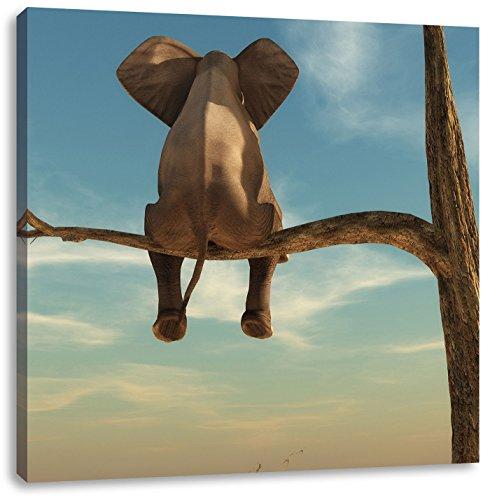 Pixxprint sitzender Elefant auf einem AST in der Wüste, Format: 60x60 auf Leinwand