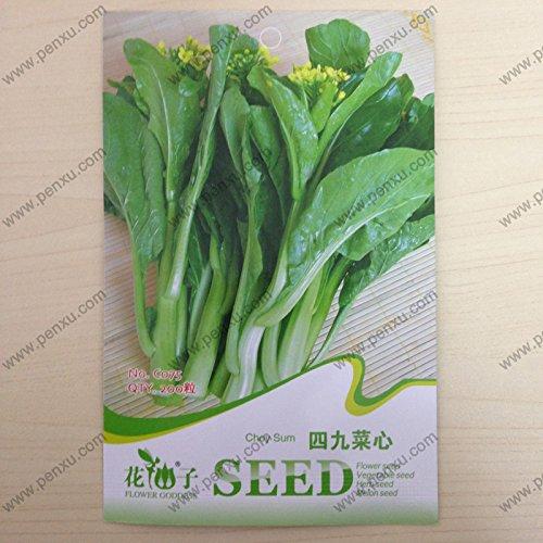 Graines végétales Pack de graines originales, somme Choy, floraison mature de 30 jours, à 200 particules de graines/sac