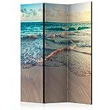 murando Biombo - Playa Mar 135x172 cm de Impresion Unilateral en el Lienzo...