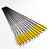 Linkboy Archery Carbon Arrows Hunting Practice Target Arrows Fluorescent Pink with Removable Tip for Compound Recurve Long Bows, Spine 300/30inch, Pack of 12PCS