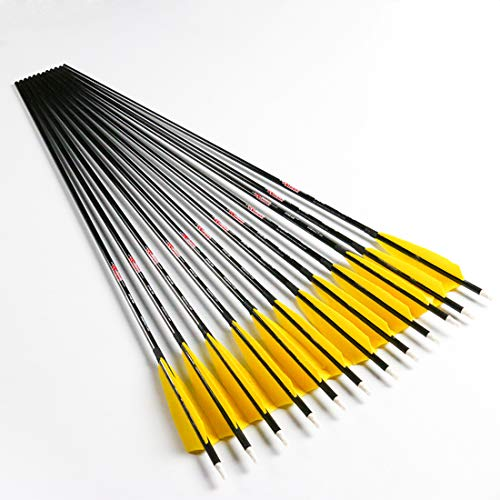 Linkboy Archery Carbon Arrows ID6.2mm 5inch Turkey Feather 75gr Arrow Tips for Compound Recurve Long Bows, Spine 700/32inch, Pack of 12PCS