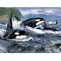 趣味と工芸品5D DIYダイヤモンド絵画フルラウンド写真クロスステッチダイヤモンド絵画海クジラモザイク家の装飾 30x40cm