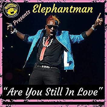 Are You Still In Love