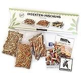 Essbare Insekten Mischung von 'SNACK insects' - 25g Insekten zum Essen - Grillen, Heuschecken & Mehlwürmer