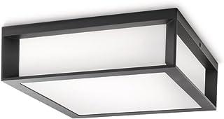 Philips Lighting Aplique / plafón exterior, 14 W, IP44, color antracita