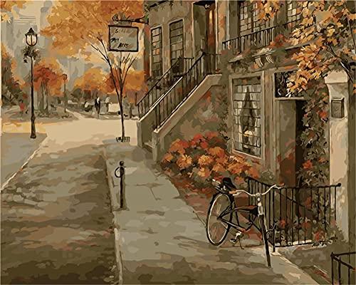 Pintura por Números para Adultos Niños bicicleta DIY Pintura al Óleo Decoración del con Pinceles y Pinturas Hogar Sin Marco 40 x 50 cm