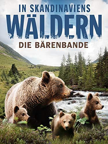 In Skandinaviens Wäldern - Die Bärenbande